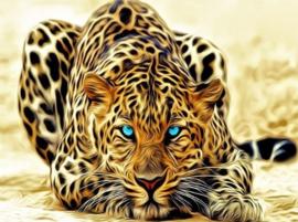 Diamond painting luipaard (65x45cm)(full)