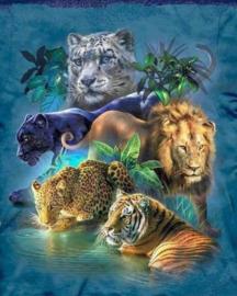 Diamond painting big cats (80x60cm)(full)