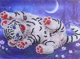 Diamond painting tijgertje (25x20cm)