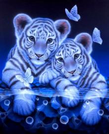 Diamond painting baby tijgers (60x45cm)(full)