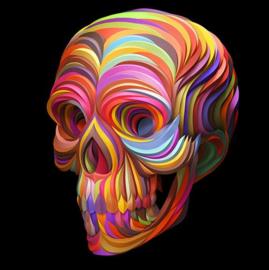 Diamond painting fleurige skull (40x40cm)(full)