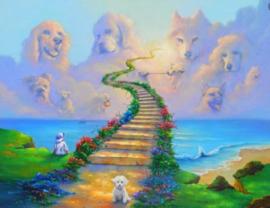 Diamond painting heaven doggy's (60x45cm)(full)