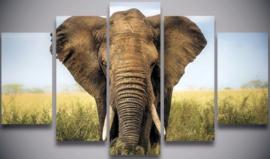 Diamond painting olifant (5 luik)(2x15x25cm)(2x15x35cm)(1x15x45cm)(full)