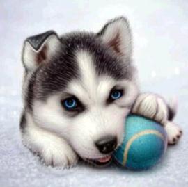 Diamond painting play dog (25x25cm)(full)