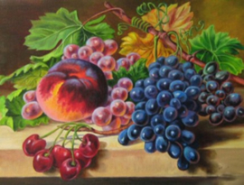 Diamond painting lekker fruit (60x45cm)(full)