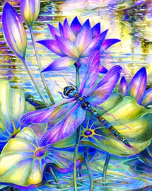 Diamond painting libelle op bloemen (60x45cm)(full)