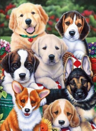 Diamond painting schattige hondjes (60x40cm)(full)