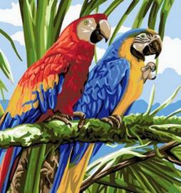 Diamond painting papegaaien (20x20cm)