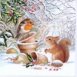 Diamond painting eekhoorntje met roodborstje (50x50cm)(full)