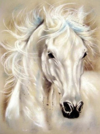 Diamond painting white horse (60x40cm)(full)
