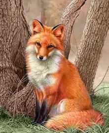 Diamond painting rood vosje (40x30cm)(full)(ronde steentjes)