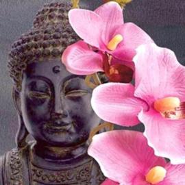 Diamond painting lotus boeddha (50x50cm)(full)