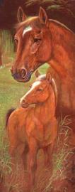 Diamond painting paarden (50x20cm)(full)