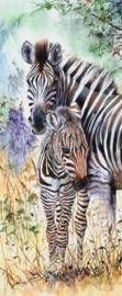 Diamond painting zebra's (75x30cm)(full)