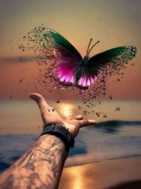 Diamond painting vlinder (65x50cm)(full)