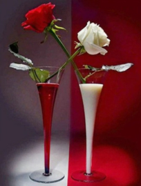 Diamond painting rood en witte roos (60x45cm)(full)