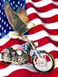 Diamond painting Harley USA (80x60cm)(full)