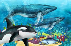 Diamond painting orka (60x40cm)(full)