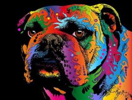 Diamond painting bulldog (30x20cm)(full)