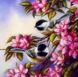 Diamond painting prachtige vogeltjes (50x50cm)(full)