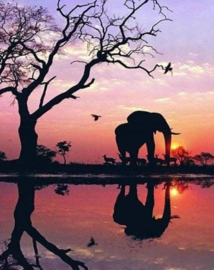 Diamond painting zonsondergang olifant (60x45cm)(full)