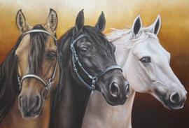 Diamond painting prachtige paarden (60x45cm)(full)