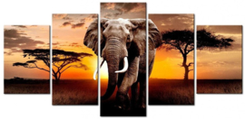 Diamond painting olifant 5 luiken (2x15x20cm)(2x15x30)(1x15x35cm)(full)
