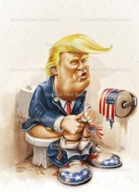 President USA 50 x 40 cm full