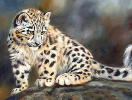 Diamond painting prachtige panter (60x45cm)(full)