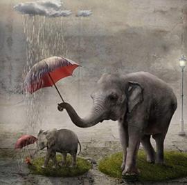 Diamond painting olifantjes met paraplu (60x60cm)(full)
