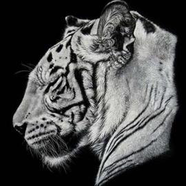 Diamond painting tijger (20x20cm)