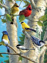 Diamond Painting prachtige vogeltjes (60x45cm)(full)