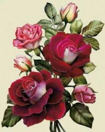 Diamond painting rode rozen (50x40cm)(full)