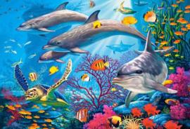 Diamond painting dolfijnen (60x45cm)(full)