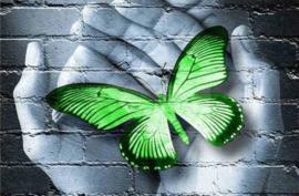 Diamond painting vlinder hand groen (45x30cm)(full)