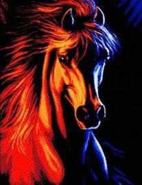 Diamond painting prachtig paard (60x45cm)(full)