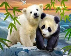 Diamond painting ijsbeer en panda (50x40cm)(full)