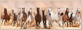 Diamond painting prachtige paarden (3 luiken)(3x20x20cm)(full)