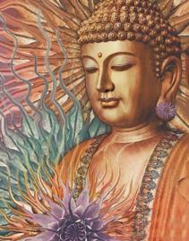 Diamond Painitng Boeddha (60x45cm)(full)