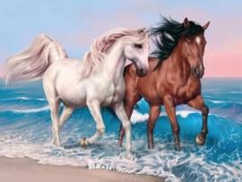 Diamond painting strand paarden (60x45cm)(full)