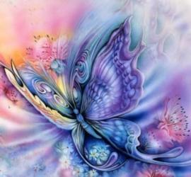 Diamond painting kleur vlinder (60x60cm)(full)