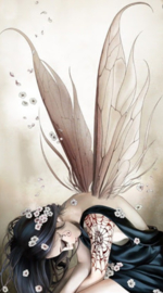 Diamond painting vlinder meisje (60x45cm)(full)