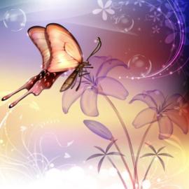 Diamond painting prachtige vlinder (40x40cm)(full)
