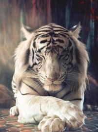 Diamond painting witte tijger (75x55cm)(full)