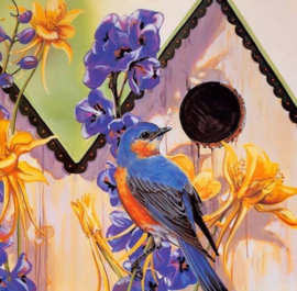 Diamond painting vogel in huisje (50x50cm)(full)