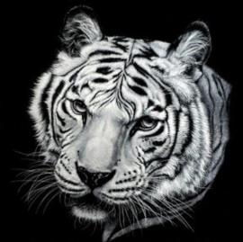 Diamond painting tijger (20x20cm)(full)