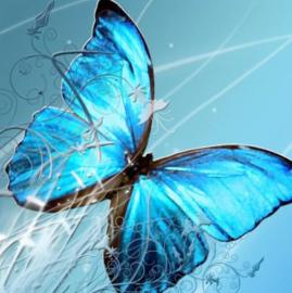 Diamond painting blauwe vlinder (25x25cm)(full)