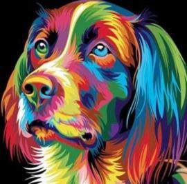 Diamond painting kleur hond (25x25cm)(full)