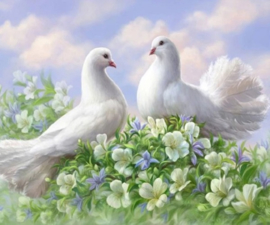 Diamond painting prachtige duiven (50x40cm)(full)(ronde steentjes)