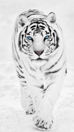 Diamond painting witte tijger (80x45cm)(full)